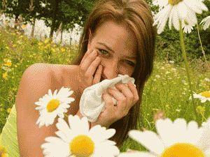 Лікування травами сезонного захворювання - алергії