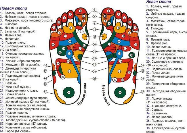 Масаж відповідають за різні органи точок на стопі як фактор зміцнення здоров`я